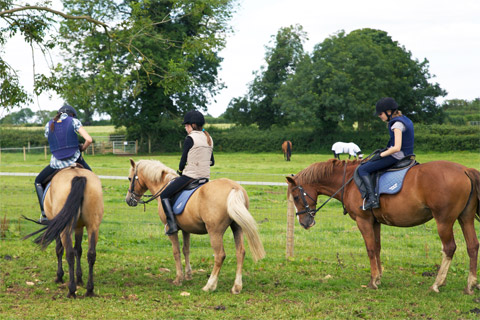 Horse riding course at Wycliffe College