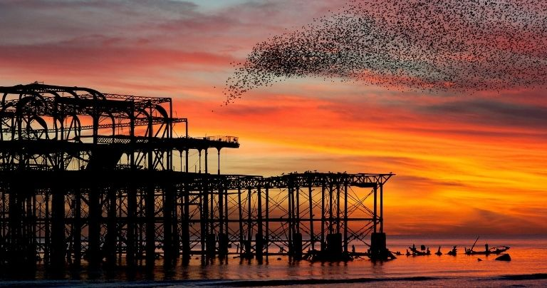 Sunset over Brighton West Pier