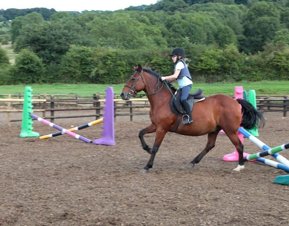 Child on horseback riding around a paddock
