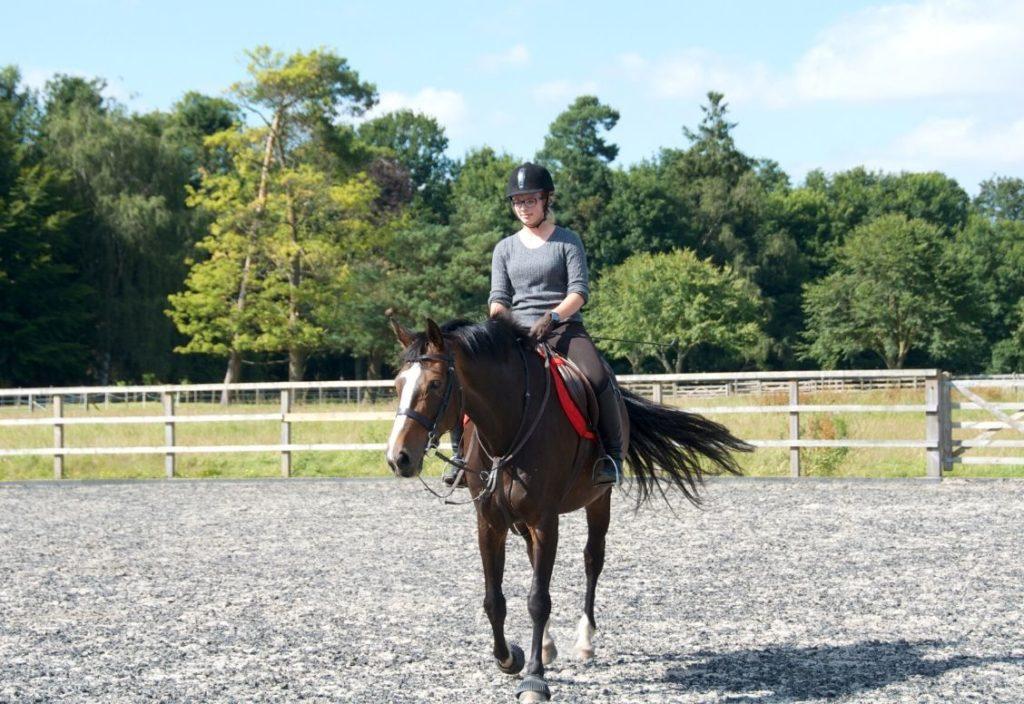 Jovem menina andando em um cavalo marrom em uma área de treinamento