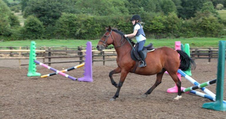 Ребенок  скачет на лошади в паддоке